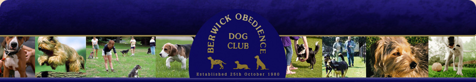 Berwick Obedience Dog Club